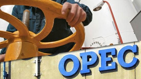 Qatar chính thức rút khỏi OPEC