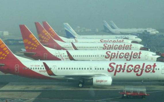 Hãng hàng không vô danh tăng trưởng 124%