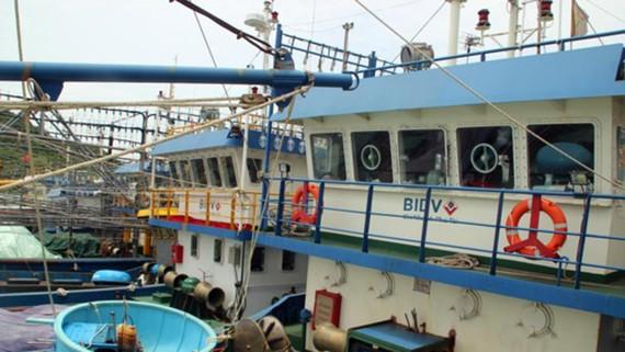 """Tàu vỏ thép hư hỏng """"đậu bờ"""" nhiều tháng trời tại cảng Đề Gi (huyện Phù Cát, Bình Định)"""