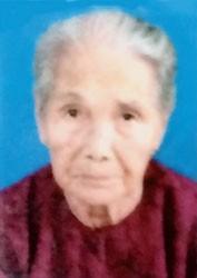 Bà mẹ Việt Nam anh hùng NGUYỄN THỊ NGHĨ
