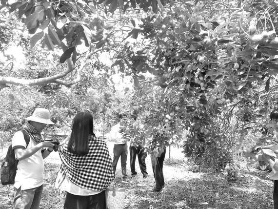 Đại diện một số hãng lữ hành khảo sát tuyến du lịch tại tỉnh Đồng Nai