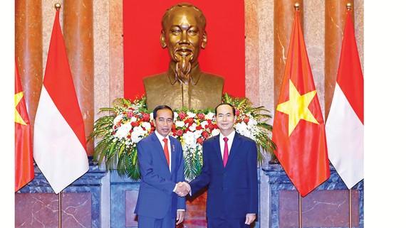 Chủ tịch nước Trần Đại Quang hội đàm Tổng thống Indonesia Joko Widodo