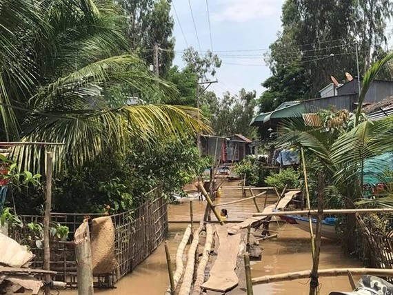 Nhiều ấp ở huyện An Phú và Châu Đốc, tỉnh An Giang đã bị ngập trong nước lũ. Ảnh: ĐINH THANH VÂN