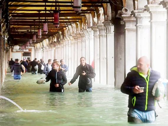 Venice chìm gần như hoàn toàn trong biển nước