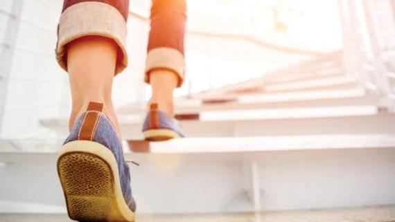 Đi bộ ít hơn 180.000 bước/tháng bị phạt
