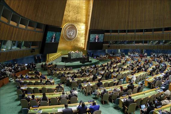 Một phiên họp của Đại hội đồng LHQ. Ảnh: VGP.
