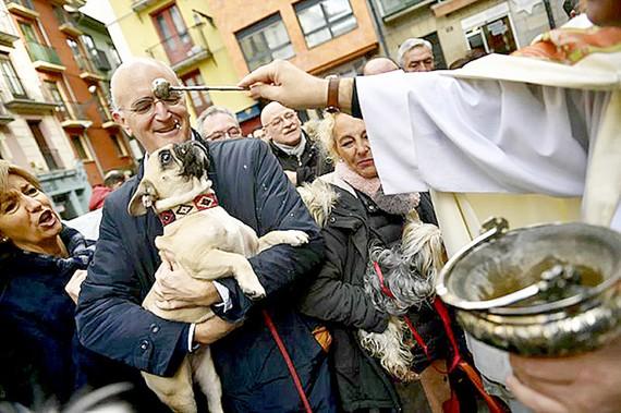 Cầu nguyện cho thú cưng