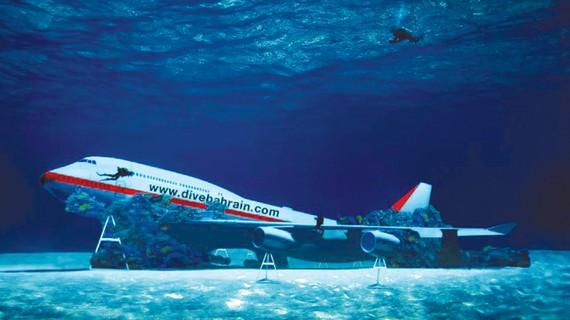 Lặn khám phá máy bay