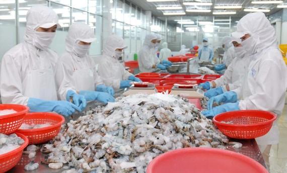 50% số dòng thuế đối với thủy sản xuất khẩu sẽ giảm khi EVFTA có hiệu lực Ảnh: CAO THĂNG