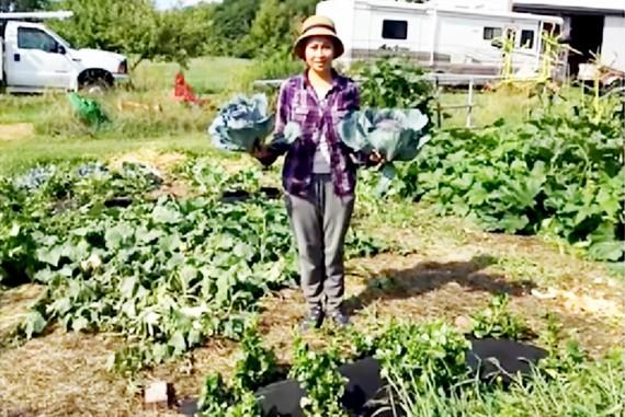 Vườn rau của chị Ngọc Bùi ở New York