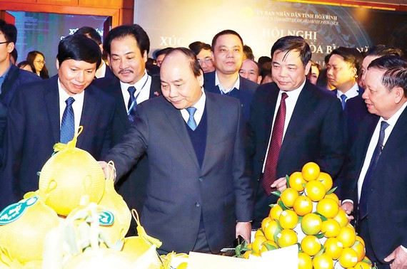 Thủ tướng Nguyễn Xuân Phúc thăm các gian trưng bày đặc sản của tỉnh Hòa Bình. Ảnh: TTXVN