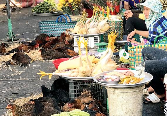 Thực phẩm tươi sống được bày bán la liệt dưới lòng đường khu chợ Hòa Bình. Ảnh: HOÀNG HÙNG