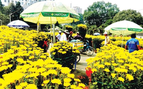 Hoa tết được bày bán tại Công viên Gia Định. Ảnh: THI HỒNG