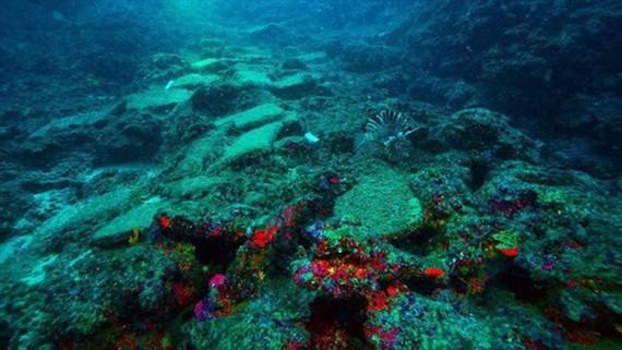 Phát hiện xác tàu 3.600 tuổi