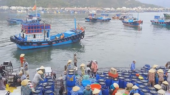Conference to seek solutions for establishing 5 fisheries centers opened