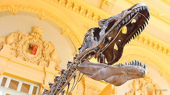 Đấu giá bộ xương hóa thạch khủng long bí ẩn