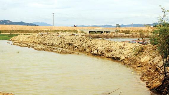 Quốc lộ 19 quá cao dồn lũ phá nát nhiều ha ruộng lúa của người dân
