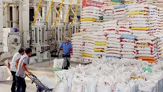 Đóng gói gạo xuất khẩu