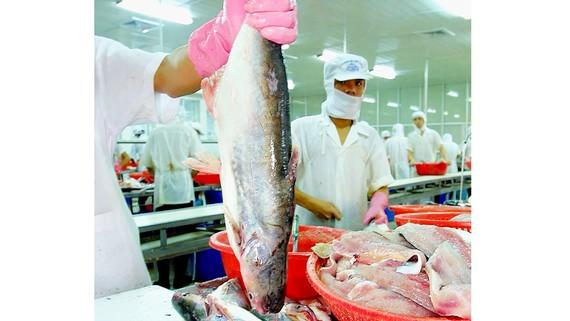 Thủy sản Việt Nam có lợi thế về xuất khẩu, sẽ mở ra thêm cơ hội khi tham gia các hiệp định FTA