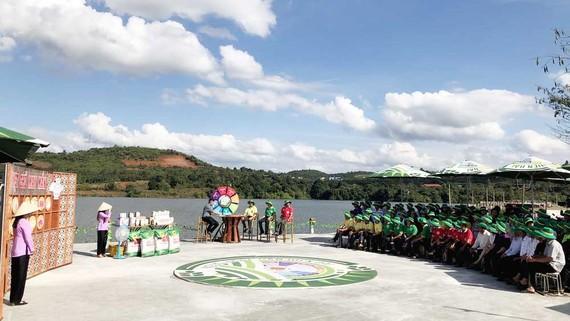 Toàn cảnh vòng sơ loại tại Đắk Nông