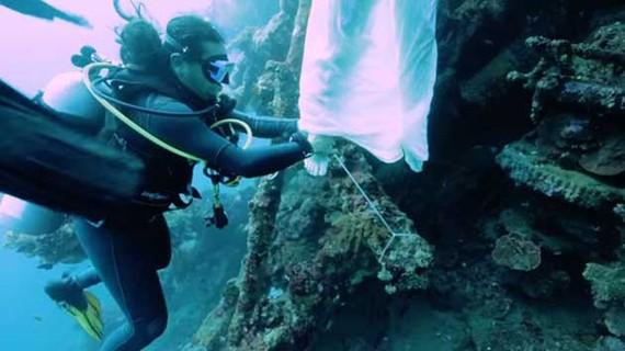 Cưới dưới đáy biển