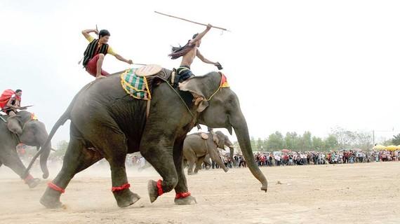 Nài voi dùng búa gỗ và gậy sắt điều khiển voi