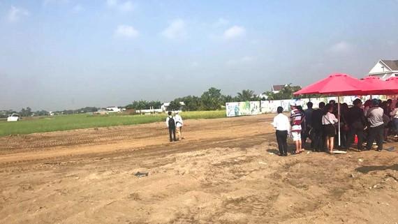 Mạo danh thanh lý đất ngân hàng, đưa khách đi mua đất lấp đất lúa làm dự án tại huyện Cần Đước (Long An)
