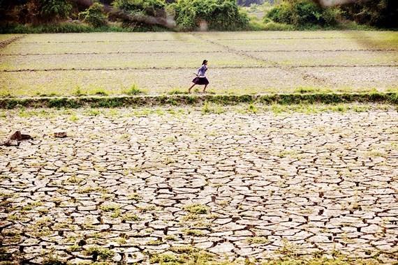 Các thế hệ tương lai bị ảnh hưởng bởi ô nhiễm đất