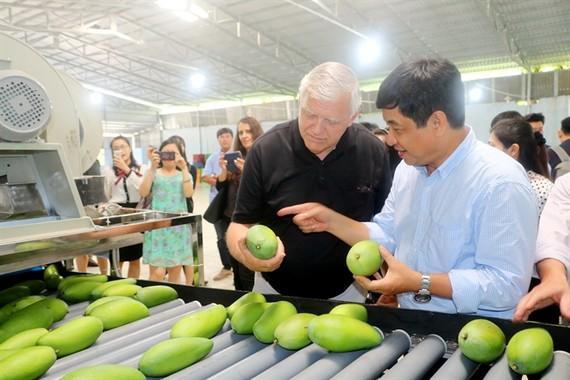 Phát huy trái cây Việt