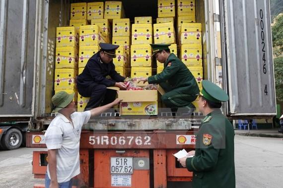 Lực lượng biên phòng phối hợp với hải quan kiểm tra hàng hóa lưu thông qua cửa khẩu Tân Thanh, Lạng Sơn. (Ảnh: Trần Việt/TTXVN)