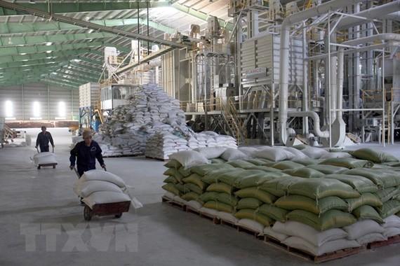 Kho chứa lúa, gạo có sức chứa 40.000 tấn của Vinafood 2 tại xã Xuân Hiệp, huyện Trà Ôn, Vĩnh Long. (Ảnh: Đình Huệ/TTXVN)