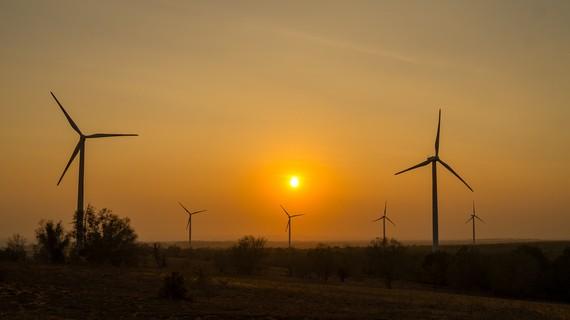 Hình ảnh Dự án điện gió tại Tỉnh Bạc Liêu ( Nguồn Internet).