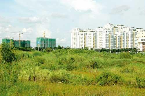 Nhà, đất chuyển nhượng bằng giấy tay được xem xét cấp GCN