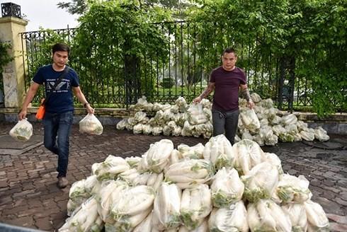 """Sinh viên tình nguyện """"giải cứu"""" củ cải cho nông dân. (Ảnh Dân Trí)"""