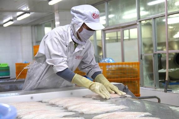 Giá trị xuất khẩu thủy sản cả nước ước đạt 2,4 tỷ USD