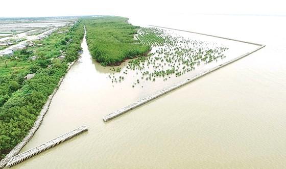 Mô hình kè ngầm tạo bãi rất hiệu quả   trong phòng chống sạt lở bờ biển ở Cà Mau         Ảnh: Ngọc Chánh
