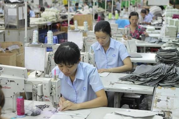 May xuất khẩu tại Công ty Cổ phần Sản xuất Kinh doanh Xuất nhập khẩu Bình Thạnh (Gilimex), Thành phố Hồ Chí Minh. (Ảnh: Thanh Vũ/TTXVN)