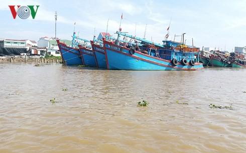 Một góc sông Tiền thuộc địa bàn Thành phố Mỹ Tho, tỉnh Tiền Giang.