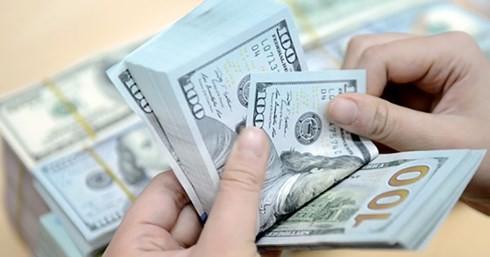 Lương sếp SCIC được tính theo mức tăng-giảm lợi nhuận?