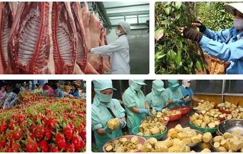 """Nhiều """"nút thắt"""" xuất khẩu nông sản Việt đang dần tháo gỡ"""