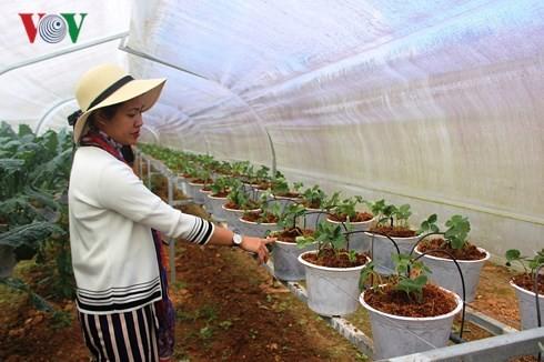 """Hút đầu tư vào nông nghiệp: """"Át chủ bài"""" cơ chế"""