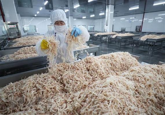 Chế biến hải sản xuất khẩu tại nhà máy ở Liên Vân Cảng, tỉnh Giang Tô, Trung Quốc ngày 5/7. (Nguồn: AFP/ TTXVN)