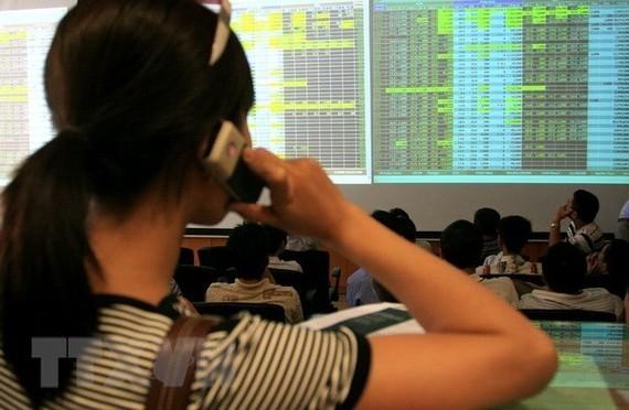 Nhà đầu tư theo dõi diễn biến thị trường trên sàn giao dịch chứng khoán Bảo Việt. (Ảnh: Phạm Hậu/TTXVN)