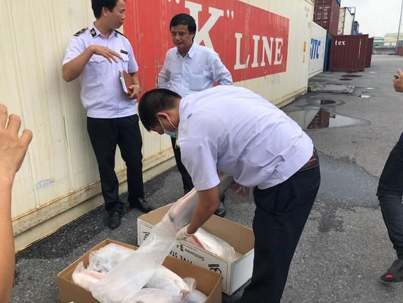 Cán bộ kiểm dịch thú y thực hiện kiểm tra hàng tạm nhập tái xuất tại cảng Đình Vũ (Hải Phòng). Ảnh: VGP/Đỗ Hương