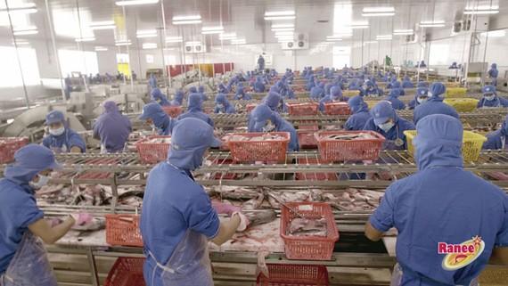 Khung cảnh nhộn nhịp của hàng ngàn công nhân trong nhà máy IDI đang miệt mài thi đua sản xuất.