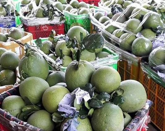 Xuất khẩu rau quả vẫn hướng tới 10 tỷ USD