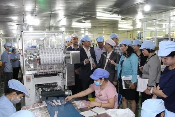 Đoàn công tác kiểm tra sản xuất tại Công ty Cổ phần Diligo Holdings tại xã Mai Lâm, Đông Anh. (Ảnh Mạnh Khánh/TTXVN)