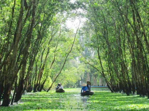 Phượt trên cung đường xanh của Trà Sư