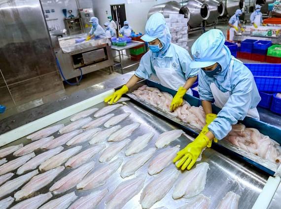 Ngành cá tra đang thiếu vắng các sản phẩm chế biến sẵn.