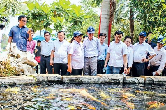 Lãnh đạo TP và các sở, ban ngành tham quan khu nuôi trồng thủy sản theo nhóm sản phẩm chủ lực của ngành nông nghiệp.